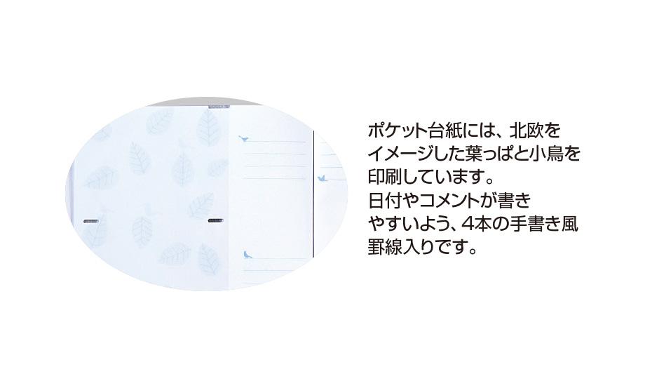 フィンダッシュ アルバム5